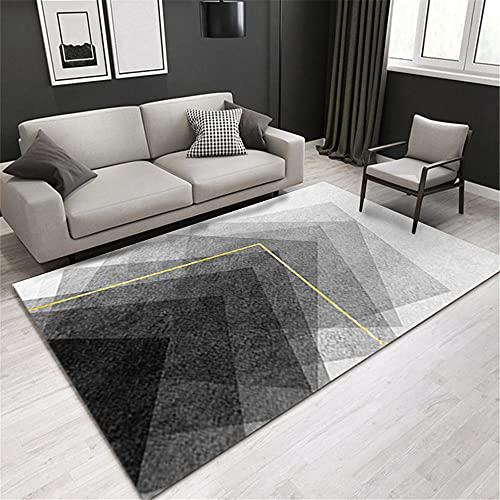 decorqcion Dormitorio Alfombra de la Sala de Estar Gris Resistencia a la Humedad Protección Ambiental Sucia alfombras Exterior Alfombra niña 100X160CM 3ft 3.4' X5ft 3'