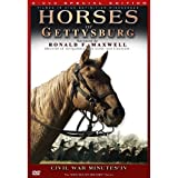 Horses of Gettysburg - CIVIL WAR MINUTES® IV 2 DVD Box Set [Reino Unido]