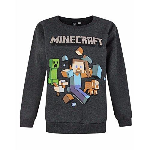 Minecraft Jungen Pullover (3-4 Jahre)
