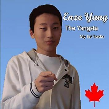 The Yangsta(My 1st Tracks)