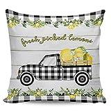 Fundas de almohada decorativas: Farm Fresh Limón Negro Blanco Plaid Truck Pure Daisy Retro Wood Tablank Short Plush Cushion Cover para sofá cama, silla, Ultra suave y transpirable, 45,72 x 45,72 cm