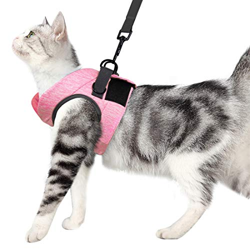 Wooruy Cat Harness and Leash Set for Walking 360° wrap-Around Small Cat and Dog Harness Cushioning and Anti-Escape Suitable for Puppies Rabbits with Cationic Fabric (M, Pink)
