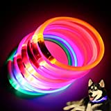Quanjucheer Collier à LED  clignotant rechargeable pour chien, chargement par USB