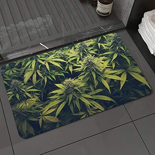Alfombra de baño y Alfombra antideslizanteHierba Verde Cannabis Bud Marihuana Plantas Marihuana Sativa Cáñamo Indica Cultivo GranAlfombrilla de Ducha de Microfibra (40x60cm)