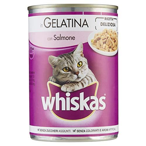 Whiskas in Patè con Salmone 390 g - Cibo per Gatto - 24 Lattine