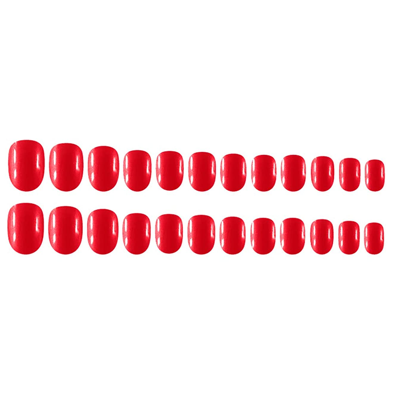 スズメバチピクニック可動Decdeal Decdeal ネイルチップ 24ピース 12異なるサイズ diy サロン ネイルアートツール 偽