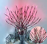 Ulalaza 6 Pack Twig Lamp Battery Operated LED Lighted Willow Branches Vase Fillers Use for Christmas Home Party Decoration Indoor Outdoor