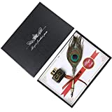Feather Pen Retro Vintage pluma pluma pluma de escritura Dip Juego de cartuchos for estudiantes de negocios presente de cumpleaños el Día del Maestro Gifting Uso Personal reemplazable de la pluma con