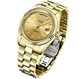 Reloj mecánico CADISEN para Hombre, Reloj automático de Zafiro automático a la Moda, Reloj de Acero Inoxidable para Hombre, Fecha Dorada, Calendario, Reloj (c8185-tutto Oro)