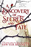 A Discovery of Secrets and Fate (Chronicles of the Stone Veil Book 2)
