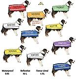 """Hunde-Halstuch, Aufschrift """"Service Dog"""" (""""Hilfshund""""), bestickt, Blau Modisches Halstuch Verhindert Unfälle, warnt vor dem Hund - 9"""