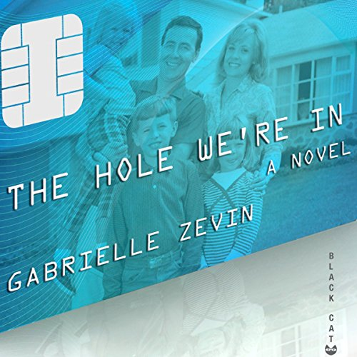 The Hole We're In audiobook cover art