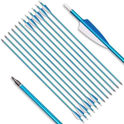 DZGN 31inch Bogenschießen Alupfeile Spine 500 mit befiedert 3-Zoll-Feder-Vane & Removable Tipps für Recurve Compound Bogen Longbow-Jagd-Schießen Schießübungen,Blau