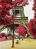 5D DIY diamante pintura punto de cruz Torre Eiffel paisaje cuadrado mosaico diamantes de imitación bordado artesanía pintura de diamantes A1 45x60cm