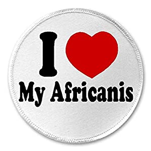 "I Love My Africanis - 3"" Sew/Iron On Patch Dog Breed Pet Lover 2"