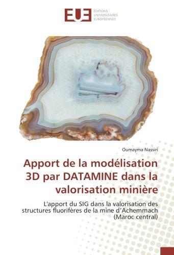 Apport de la modélisation 3D par DATAMINE dans la valorisation minière: L'apport du SIG dans la valorisation des structures fluorifères de la mine d'Achemmach (Maroc central)