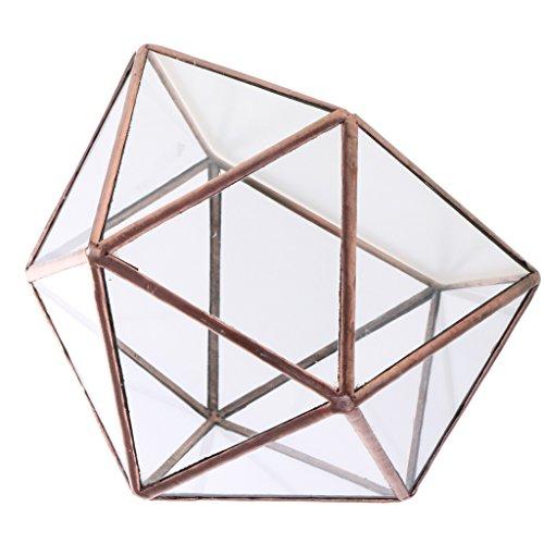 MagiDeal Geometrische Glas Schmuck Box...