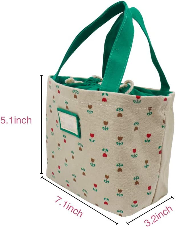 Teen Girls kids in school Office worker lunch bags Reusable Lunch Bags for Women men for work fashion and fresh design