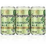 Seagram's Ginger Ale, 7.5 fl oz (Pack of 6)