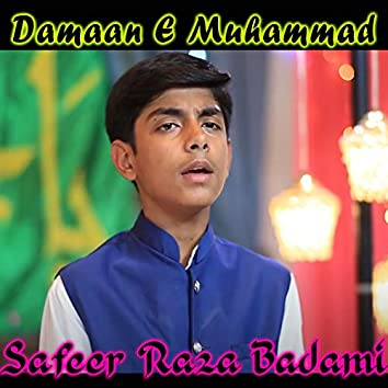 Damaan E Muhammad - Single