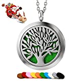 Aromatherapy Essential Oil Diffuser Necklace Jewelry - Aromatherapy Jewelry - Hypoallergenic 316L Surgical Grade Stainless Steel, 24' Chain + 10 Washable Pads Girls Women Jewelry … Clear