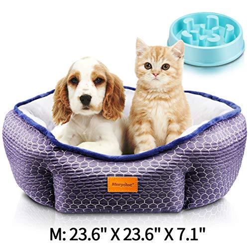 morpilot Haustierbett Katzenbett für Katzen und kleine, mittelgroße Hunde, Komfortables weichem Kissen, maschinenwaschbar Hundebett, Geschenkschale für langsames Fressen (mittelgroß: 60 * 60 * 18 cm)