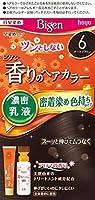 ビゲン香りのヘアカラー乳液6 (ダークブラウン) 40g+60mL ホーユー×4個