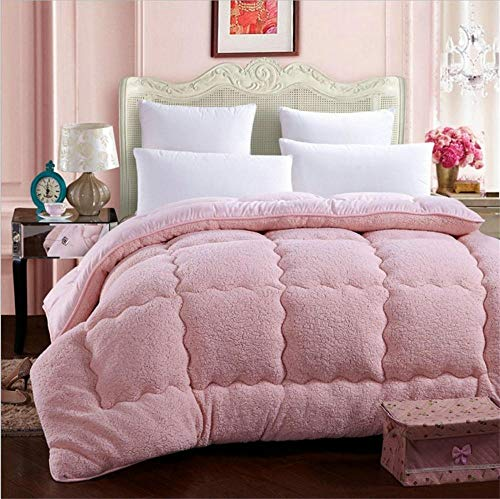 Hxsm Winter Lamb Velvet Fabric Quilt, Super Soft and Warm Hollowfiber Filled Quilt,Hygroscopic Breathable Cashmere Quilt Anti-Allergy Duvet(Single,Double)-100_x_150cm_1.5kg