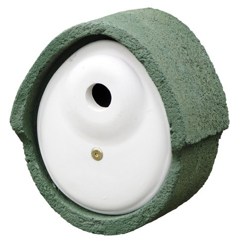 Erdtmanns 906060119 nestkastje houtbeton ovaal 32 mm groen