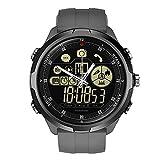 VECDY SmartWatch, Zeblaze Vibe 4 híbrido Reloj Inteligente Teléfono Deportes Hombres SmartWatch iOS/Android Q5Y8, Regalos(Gris)