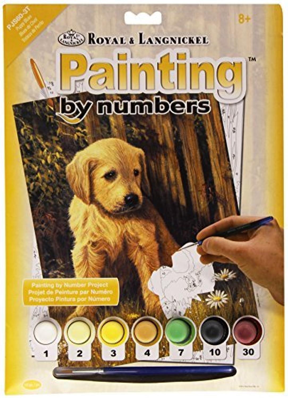 Con 100% de calidad y servicio de% 100. PBN Puppy azuls Junior Small Small Small by ROYAL BRUSH  mejor calidad mejor precio