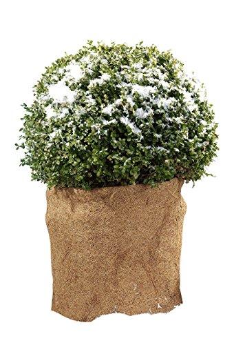 Kokosmatten Matten Antirutsch Matte Pflanzenschutz vor Kälte