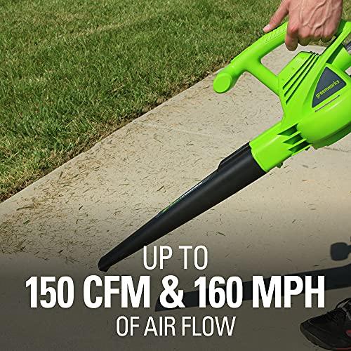 Greenworks 24012 Single Speed Electric Blower