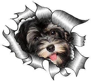 Sticar it Ltd ZERRISSENES METALL Auto aufkleber süß Havaneser Welpe Hund design Vinyl decal   Multi, Small 105x130mm approx