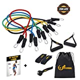 Fit Mammal Resistance Band Set-Resistance Bands for Workout for Men & Women- Warranty for Life- Resistance Tube Gym Band & Stretch Band for Exercise- 50+ Exercise Bands E-Book Included