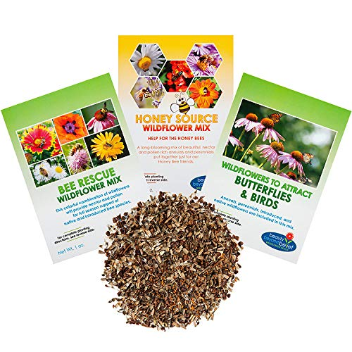 Wildflower Seeds - Pollinators Collection - Bulk Annual/Perennial Seed - Open-Pollinated, No Fillers, Honeybees, Native Bees, Birds & Butterflies, Pollinators