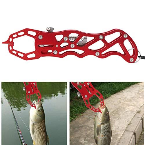 Material de acero inoxidable de calidad, cortador de hilo de pescar, alicates de pesca de aleación de aluminio, pesca, amante de la pesca(red)