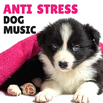 Anti Stress Dog Music – Anti Anxiety Calming Nature Sounds for Pets Therapy, Natural Sleeping Remedies, Piano Instrumental Background