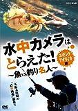 水中カメラはとらえた! 魚VS釣り名人 エギング アオリイカ編[NSDS-13773][DVD]
