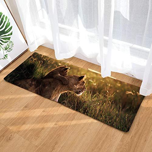 Radiancy Inc keukenmatten en tapijten zachte flanel leeuw in de zonsondergang wasbaar non-slip gel rug vloerbedekking tapijt