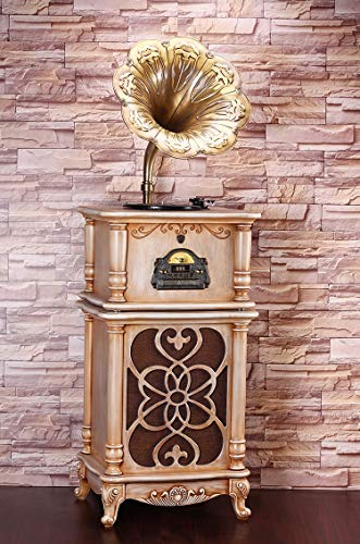 Great Features Of RAPLANC Luxury Retro Phonograph Vinyl Record, Pefect for Home Decoration,Best Coll...
