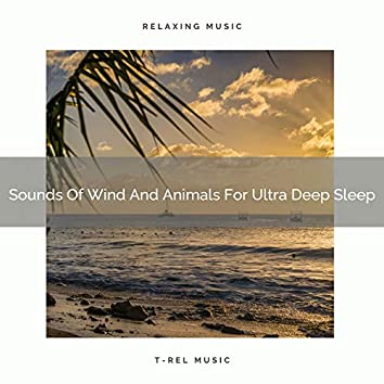 Sounds Of Wind And Animals For Ultra Deep Sleep