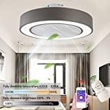 Ceiling Fan With LED Ceiling Fan Light, Can Be Dimmed With Remote Control, Adjustable Wind Speed, 72W Ultra-Quiet Living Room Bedroom Lamp Fan (Ø55CM), Gray