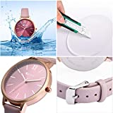 7seven Women's Analog Watch (Rose Gold Colored Strap)