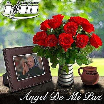 Ángel De Mi Paz
