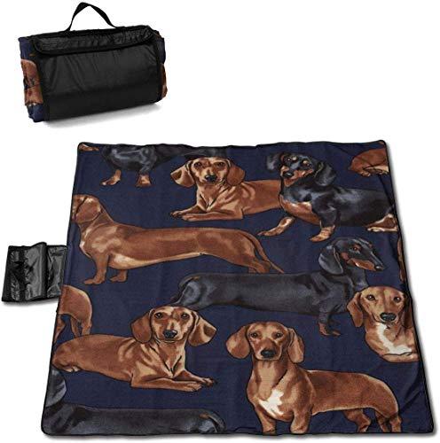 Singledog Picknickdecke Lustige Vintage Dackel Hunde Strandmatte Tote für Camping Wandergras Reisen 145X150CM