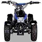 Miniquad Kinder ATV Cobra blau / schwarz - 4