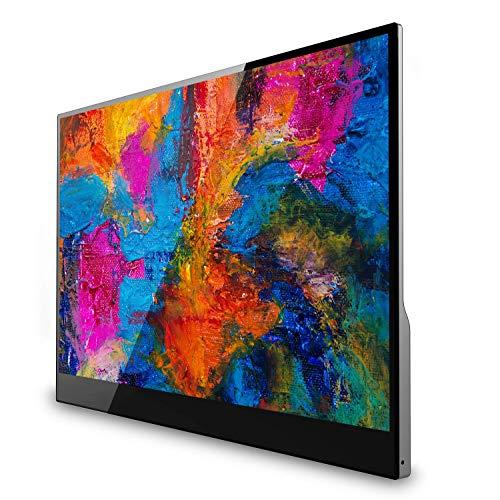 V7 L156TCH-1G 15.6-inch FHD Portable Touchscreen Monitor