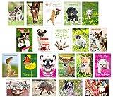 Set de 20 tarjetas de cumpleaños con sobre (animales perro gato). Tarjeta de felicitación de cumpleaños. Tarjeta de cumpleaños con texto en alemán'Mann Frau'