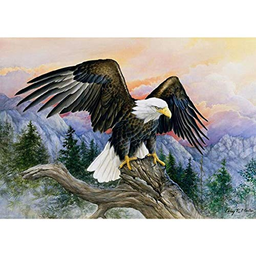 Yingxin34 Rompecabezas de 4000 Piezas para Adultos y niños - Rompecabezas de águila voladora - Rompecabezas para Adultos Rompecabezas de 4000 Piezas 141x88cm